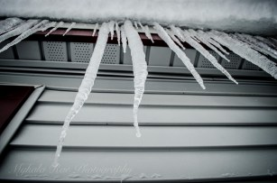 1-14-16_SNOW-21