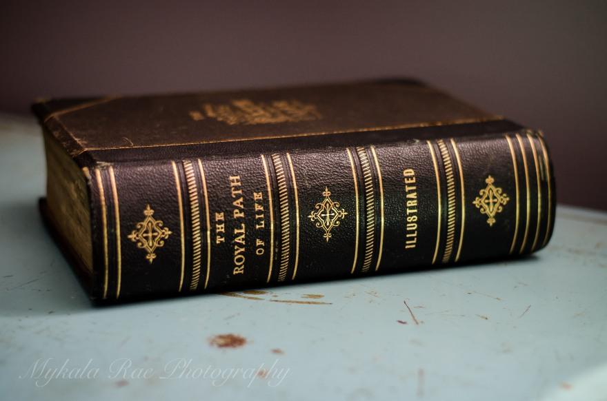 BookSafe-1