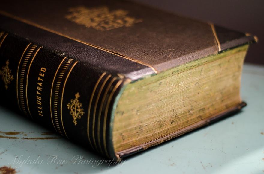 BookSafe-4.jpg