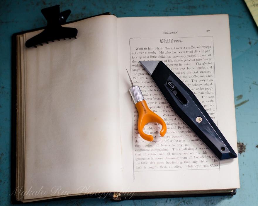 BookSafe-5