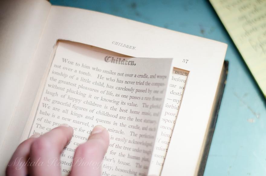 BookSafe-6