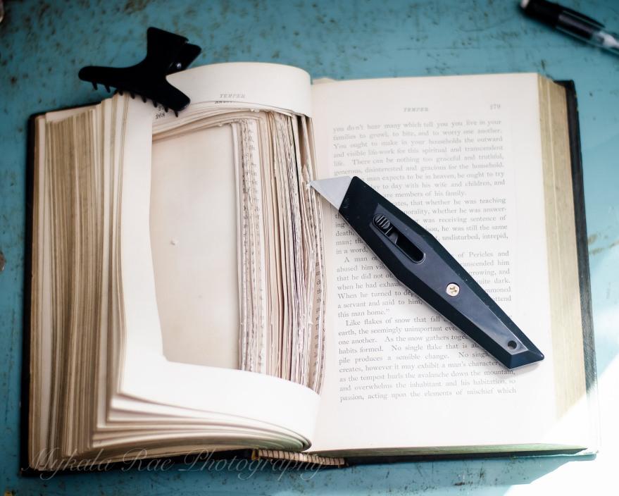BookSafe-8
